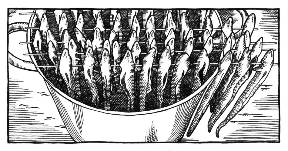 Illustraties voor poster Vischrookerij